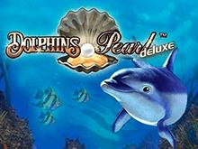 Dolphin's Pearl Deluxe в казино Чемпион на деньги