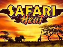 Игровые автоматы Чемпион с демо Safari Heat