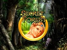 Игровые автоматы Чемпион с демо Secret Forest